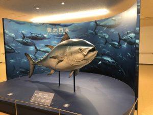 toyosu tuna auction